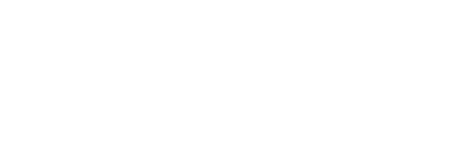Logo Les mouettes - Blanc